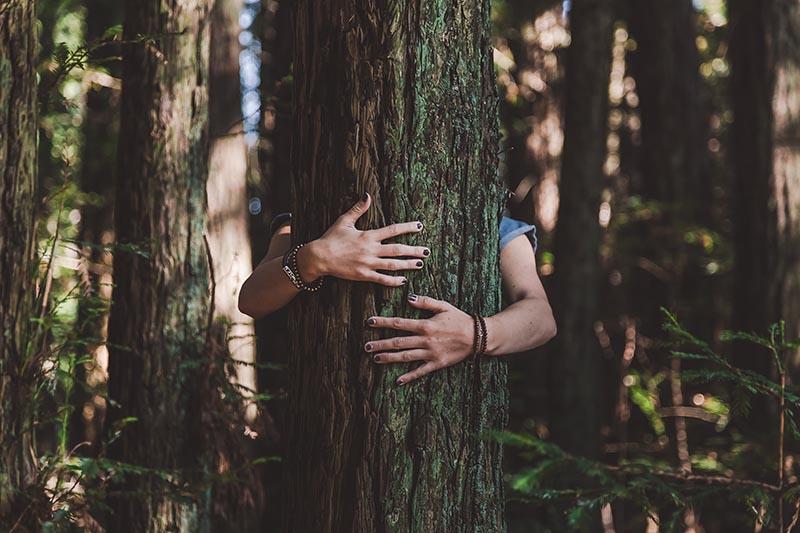 woman with arms around tree